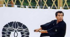 Sei Shin Kan Sogo Bujutsu